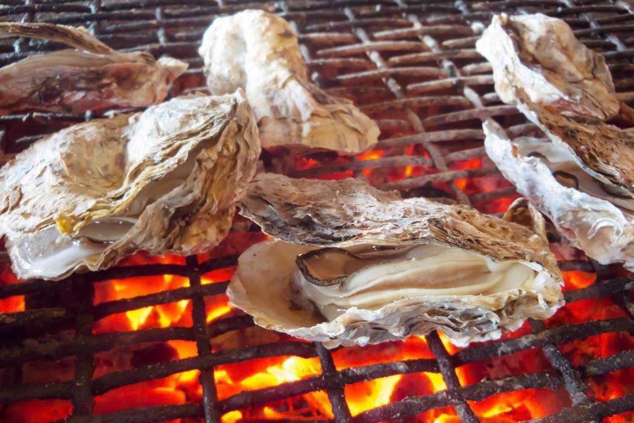 炭火の上で網焼きにする牡蠣のイメージ写真